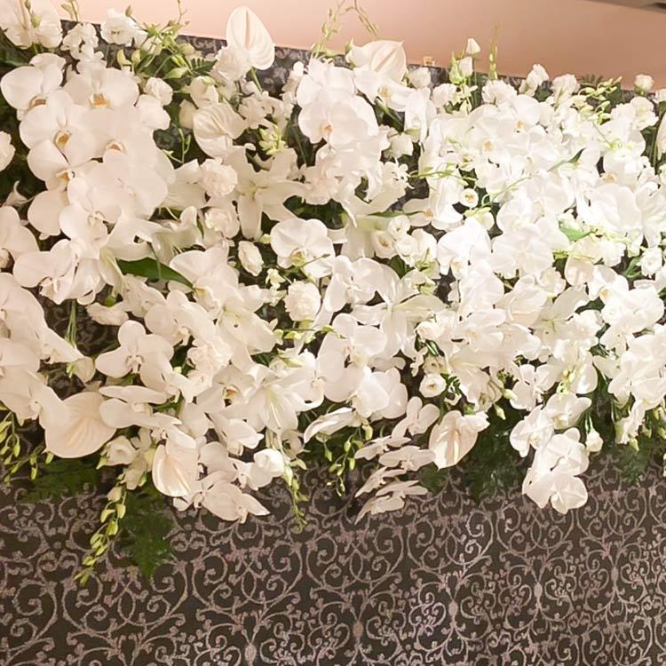 白い花のディスプレイ全体